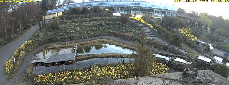 NaturaGart Webcam K13