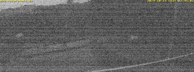 NaturaGart Webcam K14