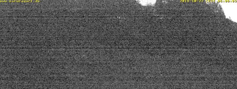 NaturaGart Webcam K16