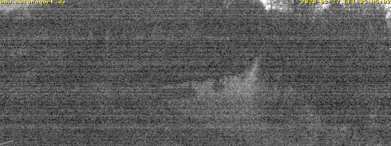 NaturaGart Webcam K17